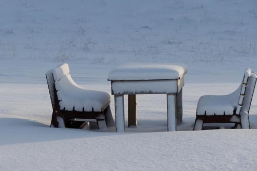 Sneeuwbank